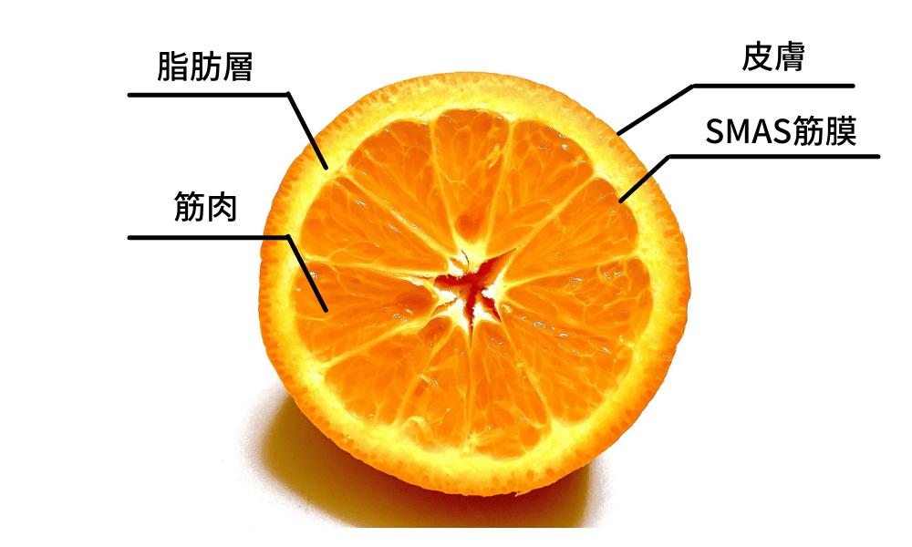 ハイフ_構図
